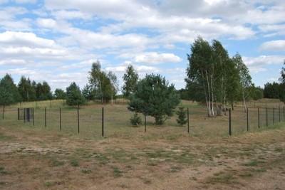 Działka Matyldów - okazja, zadbana, ogrodzona