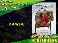 ZESZYT TERRARYSTYCZNY NR 16 - KAWIA