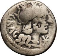 Rzym - Republika AR-denar Gragulus 136 p.n.e. st.3
