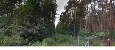Działka budowlana leśna