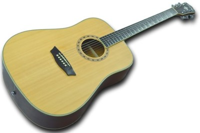 WASHBURN WD10NS